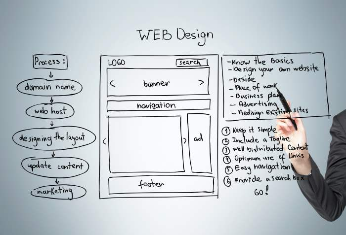 Designing the Website's Layout