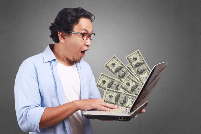 Earn Money Flipping Domains